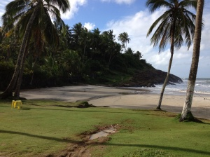 UNESCO designated rain forest and gorgeous beach.